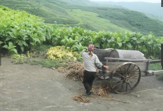朝鲜农村里,都有哪些车辆?哪些最常见哪些最时髦?