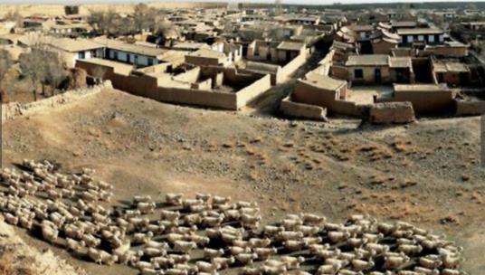 建在荒�|漠中的古城 本是直直奇迹没想到却傲立400年